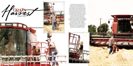Grain_harvest